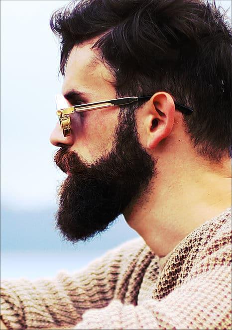 beard-photo-02-free-img.jpg